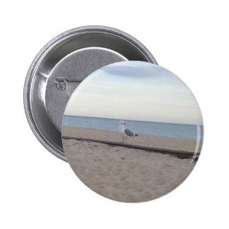 Seagull on Beach Buttons