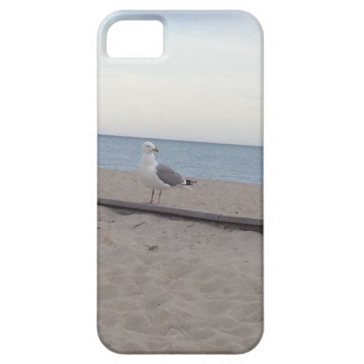 Seagull on Beach iPhone 5 Covers