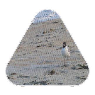 Seagull on Beach Ocean Background Bluetooth Speaker