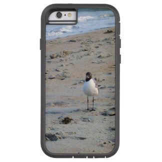 Seagull on Beach Ocean Background Tough Xtreme iPhone 6 Case