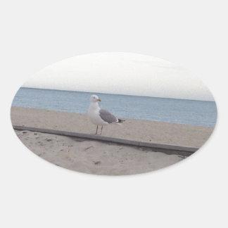 Seagull on Beach Oval Sticker