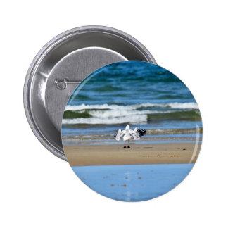 SEAGULL ON BEACH QUEENSLAND AUSTRALIA PINBACK BUTTON