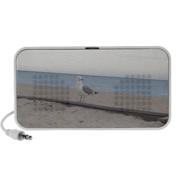 Seagull on Beach Speaker