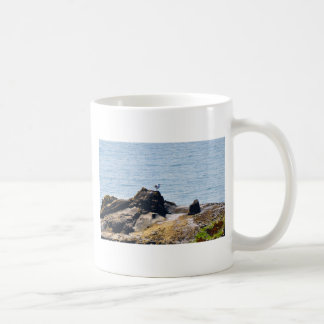 Seagull on Cliffs Coffee Mug
