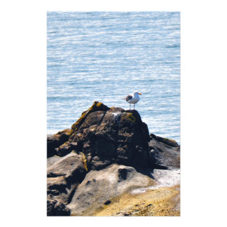 Seagull on Cliffs Stationery