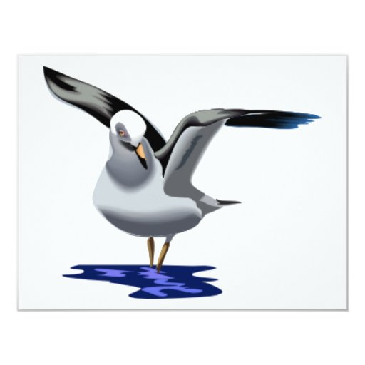Seagull on Puddle Card