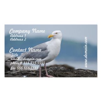 Seagull on Rock Business Cards