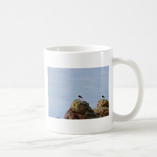 SEAGULL ON ROCK STRAHN TASMANIA AUSTRALIA COFFEE MUG
