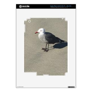 Seagull on Sandy Beach Skin For iPad 3