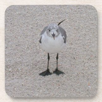 Seagull on the Beach Beverage Coaster