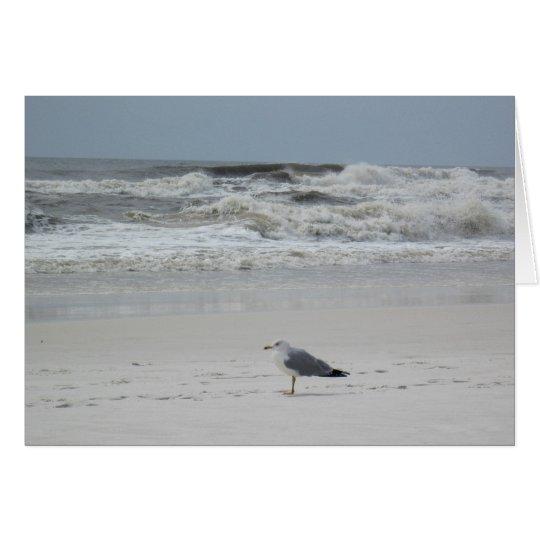 Seagull on the Beach Card