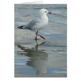 Seagull on the Beach Greeting Card