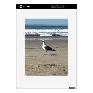 Seagull on the Beach iPad Decals
