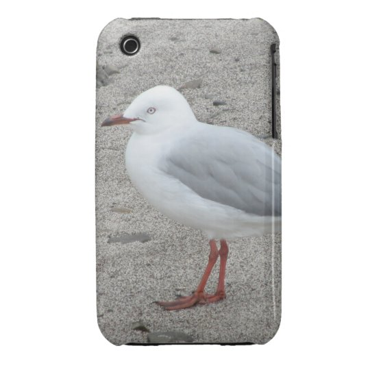 Seagull on the Beach iPhone 3 Case