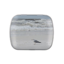 Seagull on the Beach Jelly Belly Candy Tin