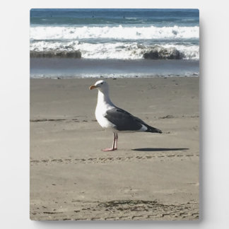 Seagull on the Beach Plaque