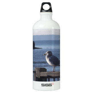 Seagull on the harbor bay aluminum water bottle