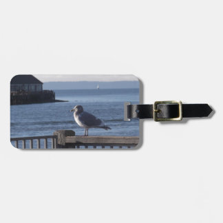 Seagull on the harbor bay tag for luggage