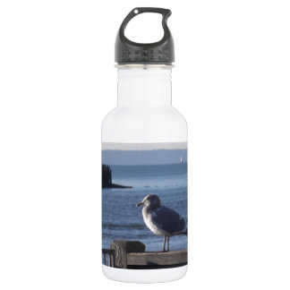 Seagull on the harbor bay water bottle