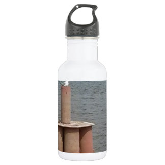 Seagull on the Mississippi River Water Bottle