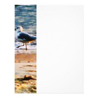 Seagull on Virginia Beach at Dawn Flyer
