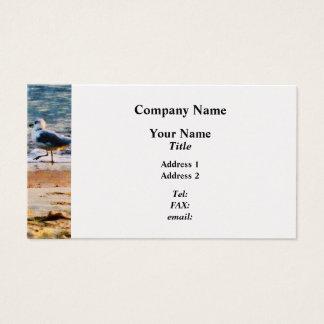 Seagull on Virginia Beach at Dawn - Platinum Business Card