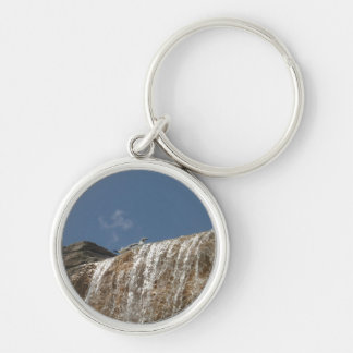 Seagull on waterfall keyring Silver-Colored round keychain