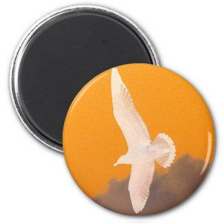 Seagull Orange 2 Inch Round Magnet