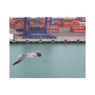 Seagull Over Dock Wrapped Canvas Print