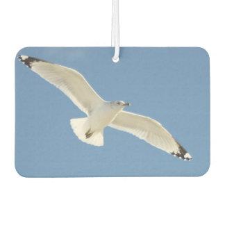 Seagull photo air freshener
