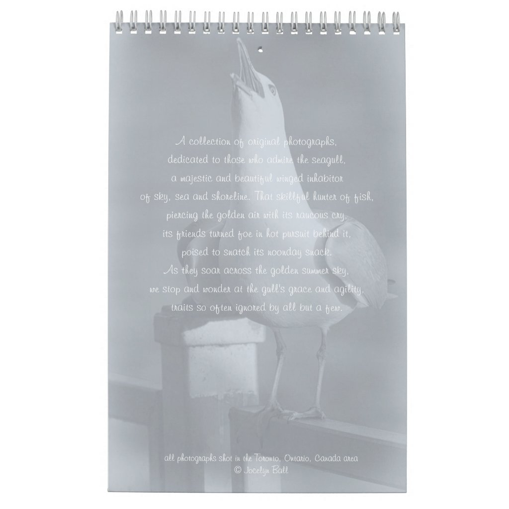 Seagull Photographs Toronto Birds on Beach Calendar