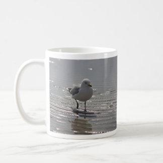 Seagull photography coffee mug