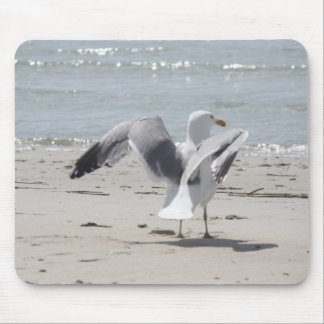 Seagull photography mouse pad