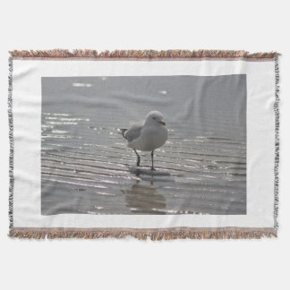 Seagull photography throw