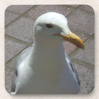 Seagull Plastic Coaster