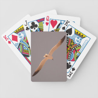 Seagull playing cards deck