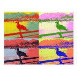 Seagull Pop Art Post Card