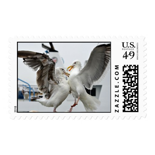 Seagull postage stamp