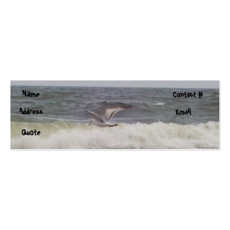 Seagull Profile Card Business Cards