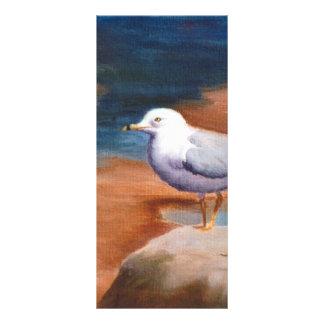 Seagull Rack Card