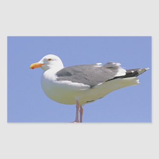 Seagull Rectangular Sticker