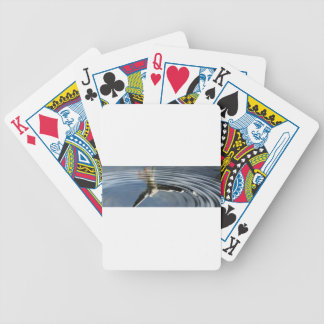 Seagull reflection bicycle playing cards