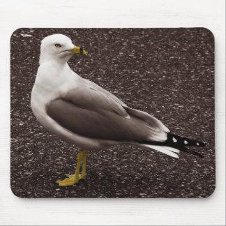 Seagull - Selective Color Sepia Photo Mouse Pad