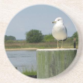 Seagull Sentinal Drink Coaster