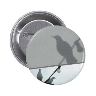 Seagull shadows badge