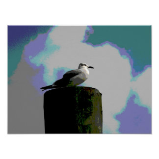 Seagull sitting on a dock posterized photograph posters