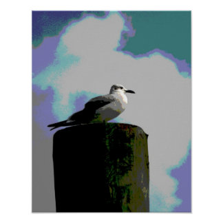 Seagull sitting on a dock posterized photograph print