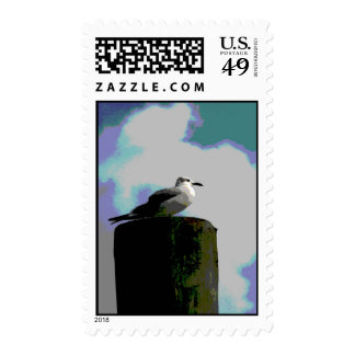 Seagull sitting on a dock posterized photograph postage