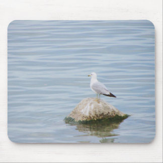 Seagull sitting on a Rock Mouse Pad