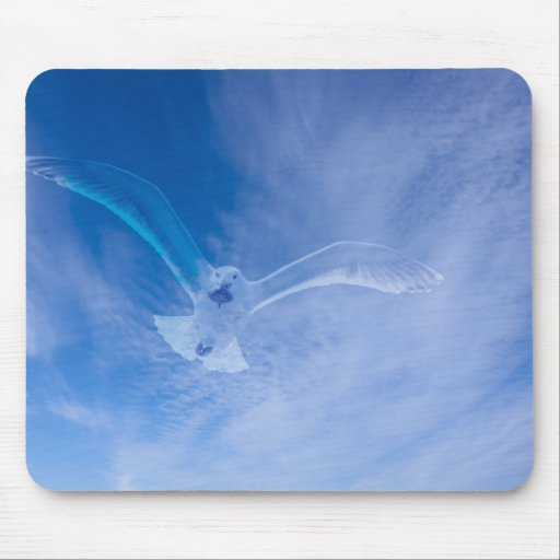 Seagull Soaring Mouse Pad